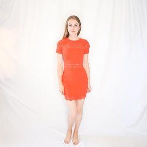 LIKELY Eyelet Manhatten Dress Size 0 NWT 1363